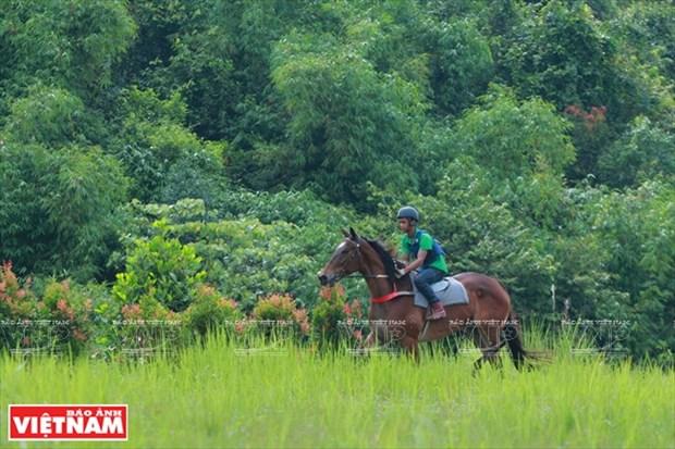 Hipodromo de Thien Ma Madagui en Lam Dong hinh anh 1
