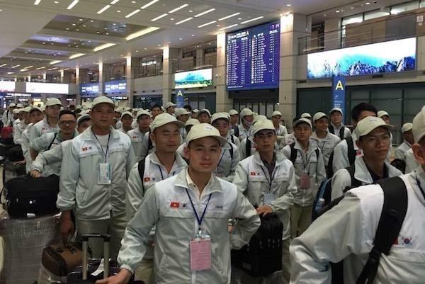 Vietnam planea enviar a 120 mil trabajadores al extranjero en 2019 hinh anh 1