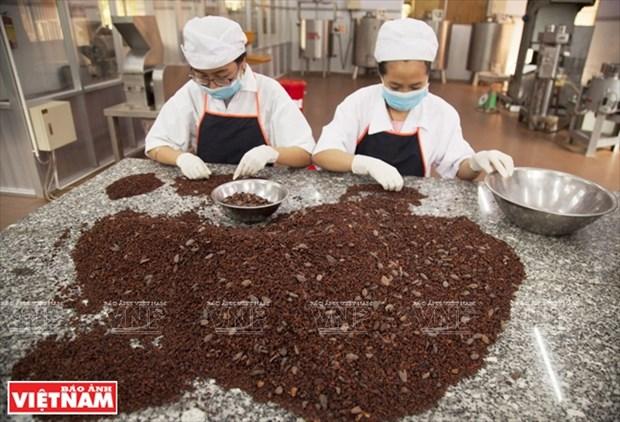 Chocolate hecho en Tien Giang hinh anh 3