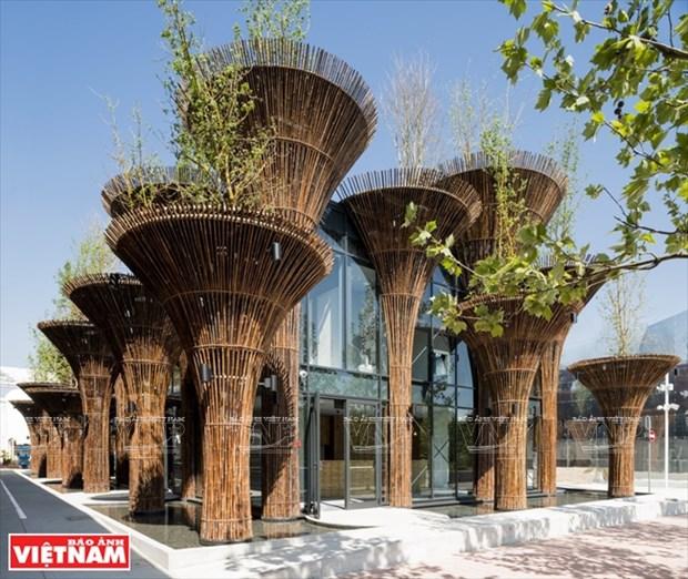 Takashi Niwa, arquitecto de los edificios verdes hinh anh 4