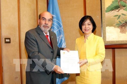 Director general de FAO elogia los logros de desarrollo de Vietnam hinh anh 1