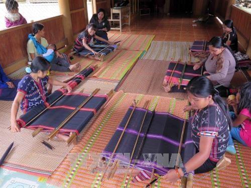 Fundacion japonesa ayuda etnia vietnamita en preservacion de oficio de tejer brocados hinh anh 1
