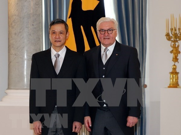 Embajador vietnamita presenta cartas credenciales al presidente de Alemania hinh anh 1