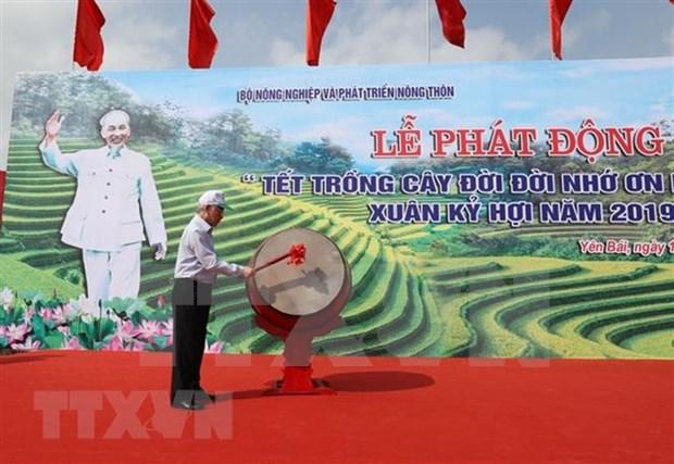 Maximo dirigente politico de Vietnam inaugura festival de cultivacion de arboles hinh anh 1