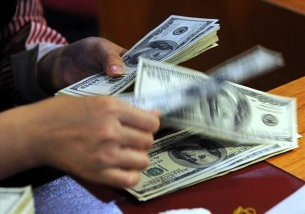 Se mantendra estable el tipo de cambio en Vietnam este ano, evaluan expertos hinh anh 1