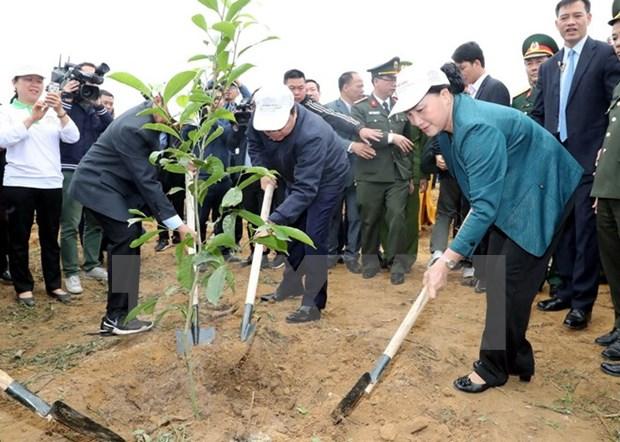 Lanzan campana de plantacion de arboles en provincia vietnamita de Hoa Binh hinh anh 1
