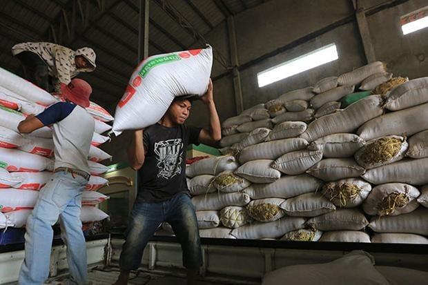 Disminuyen las exportaciones de arroz de Camboya hinh anh 1