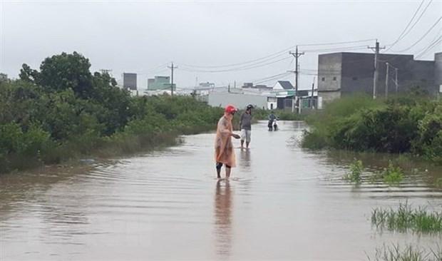 Vietnam promueve prevencion contra desastres naturales hinh anh 1