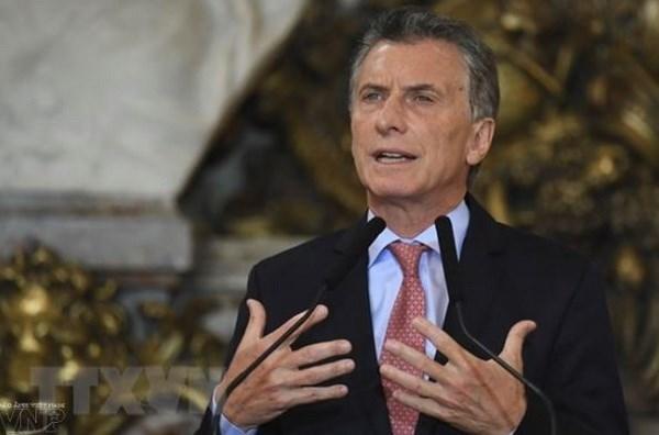 Impulsara visita del presidente Mauricio Macri nexos comerciales Vietnam-Argentina hinh anh 1