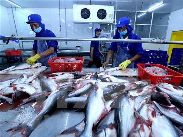 Vietnam aspira a ganar 10 mil millones de dolares de exportacion de productos acuicolas en 2019 hinh anh 1
