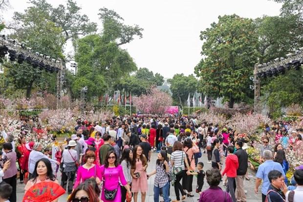 Festival de flor de cerezo atrae las maravillas del mundo a Vietnam hinh anh 1