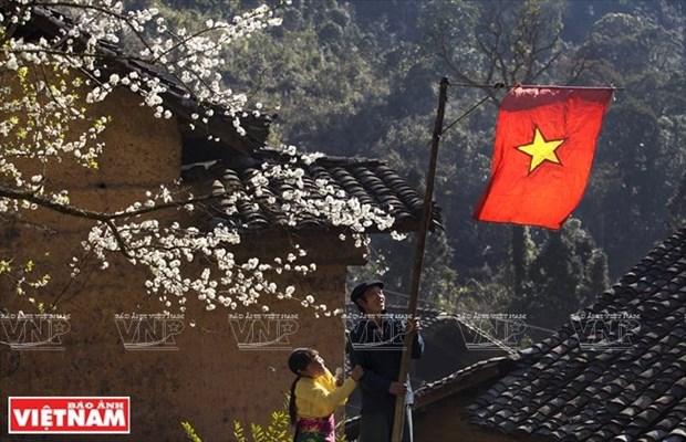 Hechizan a turistas flores de melocoton en la meseta rocosa Dong Van hinh anh 1