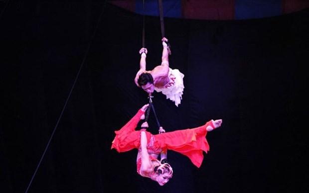 Ganan artistas vietnamitas medalla de plata en el Festival Internacional de Circo en Espana hinh anh 1
