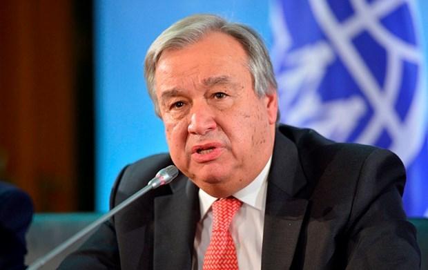 Desea secretario general de la ONU avances en negociaciones entre EE.UU y Corea del Norte hinh anh 1