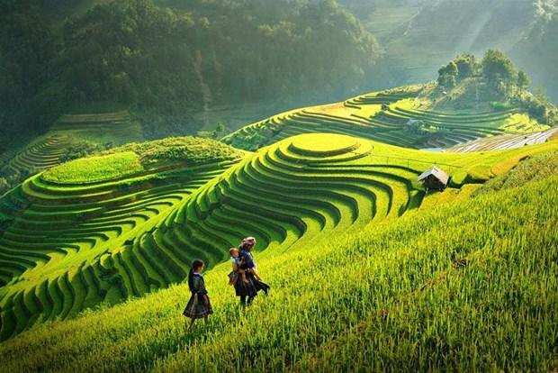 """Publica el Banco Mundial su """"Informe de la valoracion del turismo de Vietnam"""" hinh anh 1"""