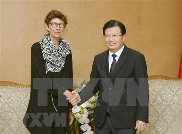 Embajadora noruega dispuesta de promover nexos con Vietnam hinh anh 1