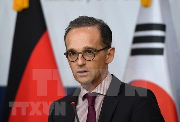 Ministro aleman lamenta resultado de segunda Cumbre EE.UU.-RPDC hinh anh 1