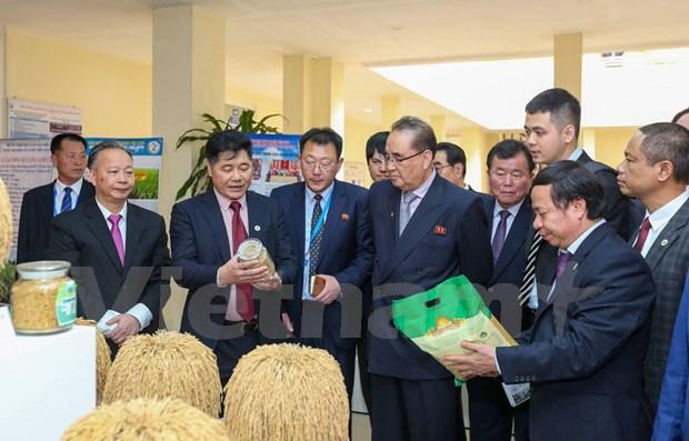 Cumple delegacion partidista de Corea del Norte intensa agenda durante visita a Vietnam hinh anh 1