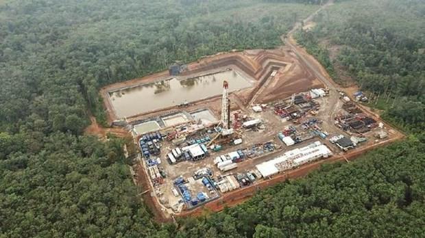 Detecta Indonesia 10 nuevos yacimientos de gas hinh anh 1