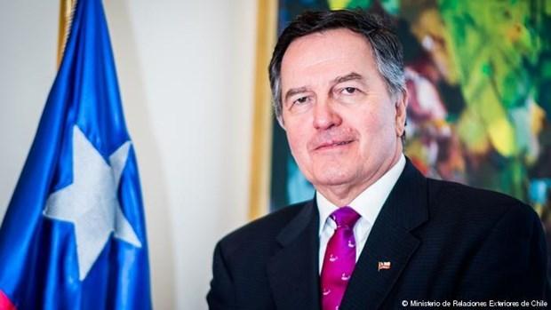 Llama canciller chileno a un crecimiento integral e inclusivo en reunion del APEC hinh anh 1