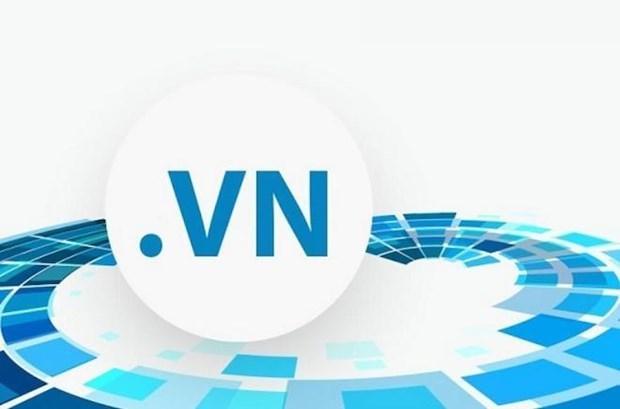 Repunta dominio vietnamita .vn como el mas registrado de la region del sudeste asiatico hinh anh 1