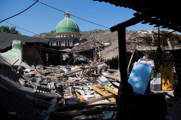 Entregara Indonesia este ano casas para victimas de terremotos en Lombok hinh anh 1