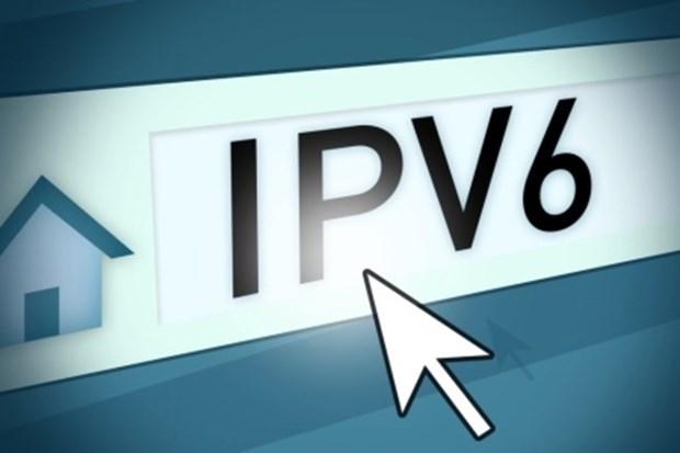 Ocupa Vietnam puesto 13 a nivel mundial en tasa de uso de IPv6 hinh anh 1