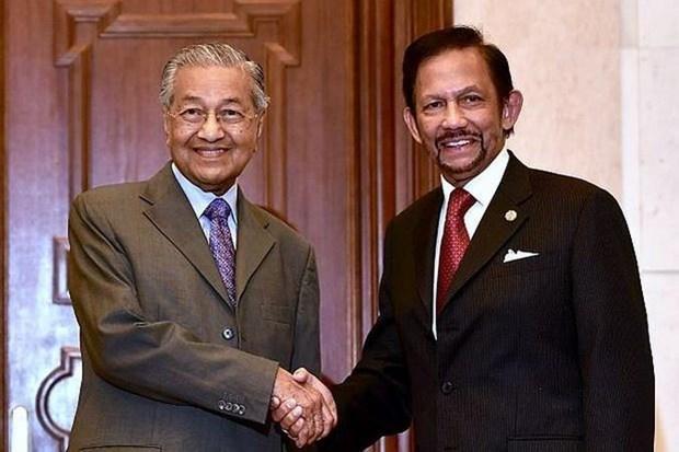 Fortalecen Malasia y Brunei lazos bilaterales hinh anh 1