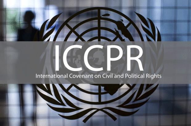 Presentara Vietnam su informe sobre implementacion del Pacto Internacional de Derechos Civiles y Politicos hinh anh 1