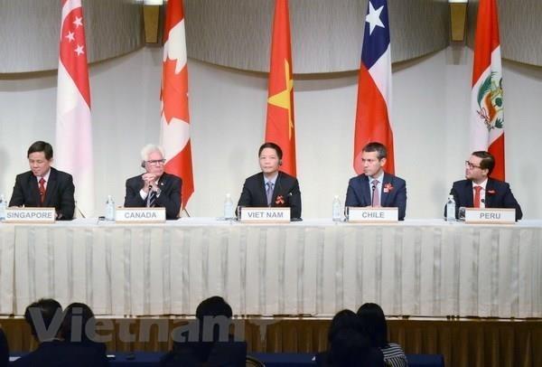 Acelera Vietnam implementacion del Acuerdo Transpacifico hinh anh 1