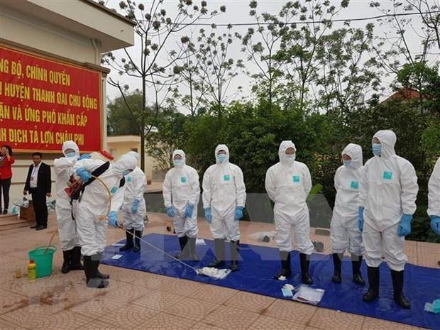 Realizan en Vietnam simulacro de prevencion contra epidemia de fiebre porcina hinh anh 1