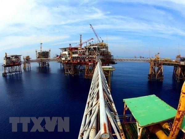 Empresa petrolera Vietsovpetro recibe primer flujo de crudo de yacimiento Ca Tam hinh anh 1