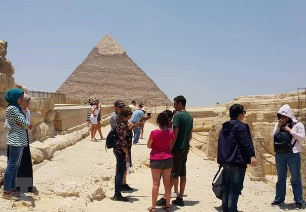 Recomiendan al sector turistico de Vietnam cautela con viajes a Egipto hinh anh 1