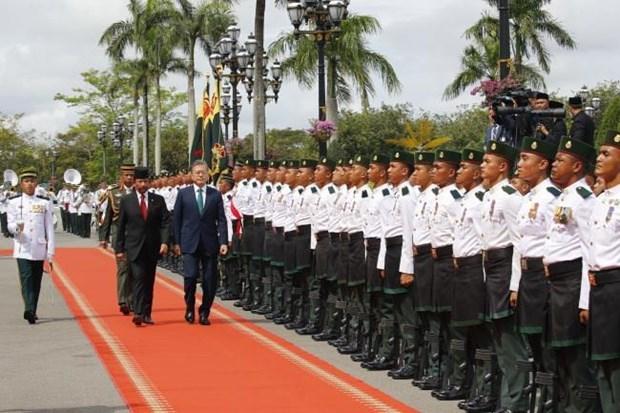 Fomentan Brunei y Corea del Sur la cooperacion bilateral hinh anh 1