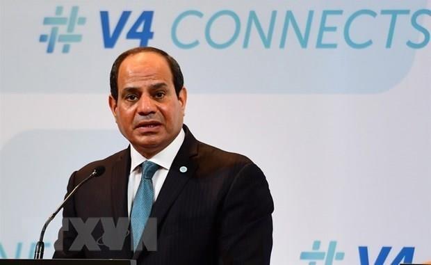 Muestra presidente de Egipto confianza en fortalecimiento de los vinculos entre su pais y Vietnam hinh anh 1