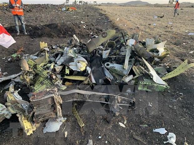 Ofrece Indonesia asistencia para investigacion sobre accidente aereo en Etiopia hinh anh 1