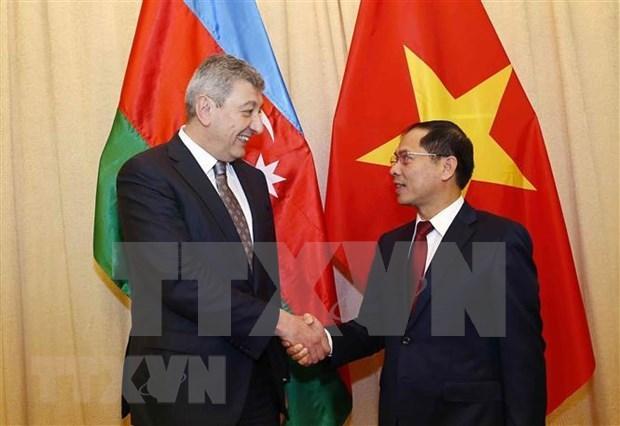 Valoran vicecancilleres de Vietnam y Azerbaiyan acciones para fortalecer las relaciones bilaterales hinh anh 1