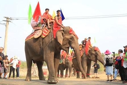 Celebran en Vietnam competencias de elefantes durante Festival de Cafe de Buon Ma Thuot hinh anh 1