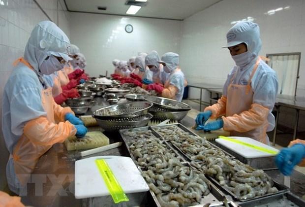 Planea Vietnam obtener ingresos de cuatro mil millones de dolares por exportaciones de camarones hinh anh 1
