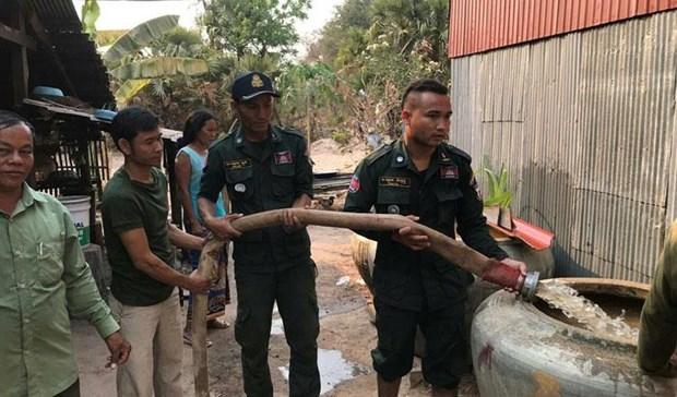Ayuda Tailandia a Camboya ante fuerte sequia hinh anh 1