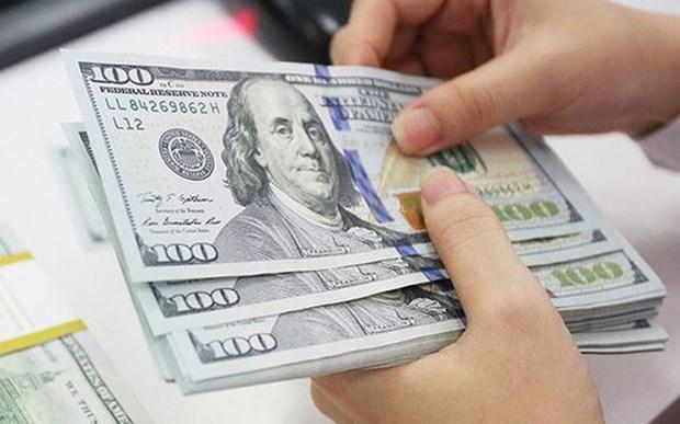 Invierten empresas vietnamitas mas de seis millones de dolares en el extranjero hinh anh 1