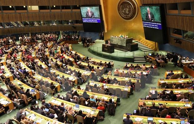 Define Vietnam en la ONU prioridades para alcanzar igualdad de genero hinh anh 1