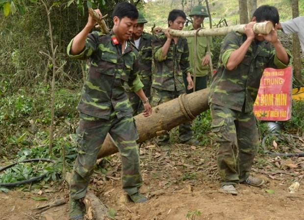 Desactivan en Vietnam bomba de 350 kilogramos hinh anh 1