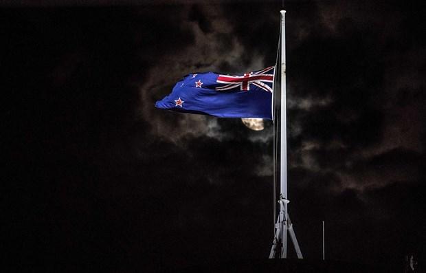 Se solidariza Vietnam con Nueva Zelanda por tiroteos en mezquitas hinh anh 1