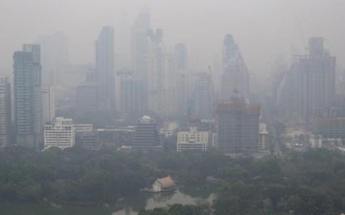 Cancelan vuelos en Tailandia por grave contaminacion del aire hinh anh 1