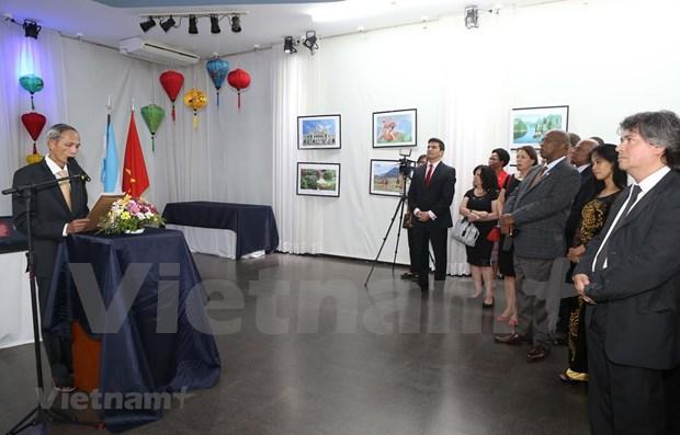 Vietnam y Argentina fomentan cooperacion bilateral hinh anh 1