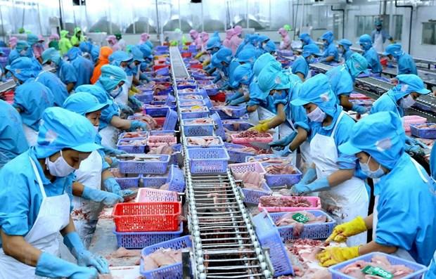 Vietnam, cuarto exportador mundial de productos acuaticos hinh anh 1