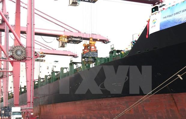 Barco carguero de 40 mil toneladas arriba al puerto de Ciudad Ho Chi Minh hinh anh 1