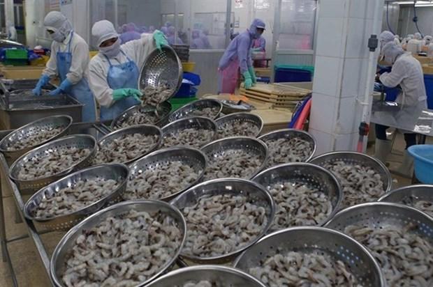 Proyecta Vietnam ingresar mas de cuatro mil millones de dolares por la exportacion de camarones hinh anh 1