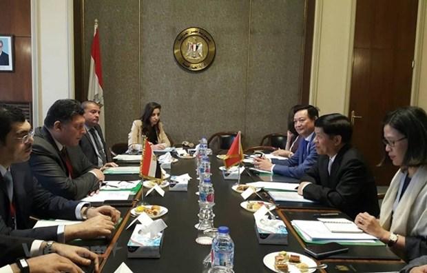 Considera Egipto a Vietnam un socio importante en su politica hacia Asia hinh anh 1